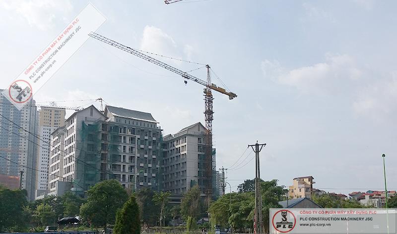 Cho Thuê Cẩu Tháp TC7055